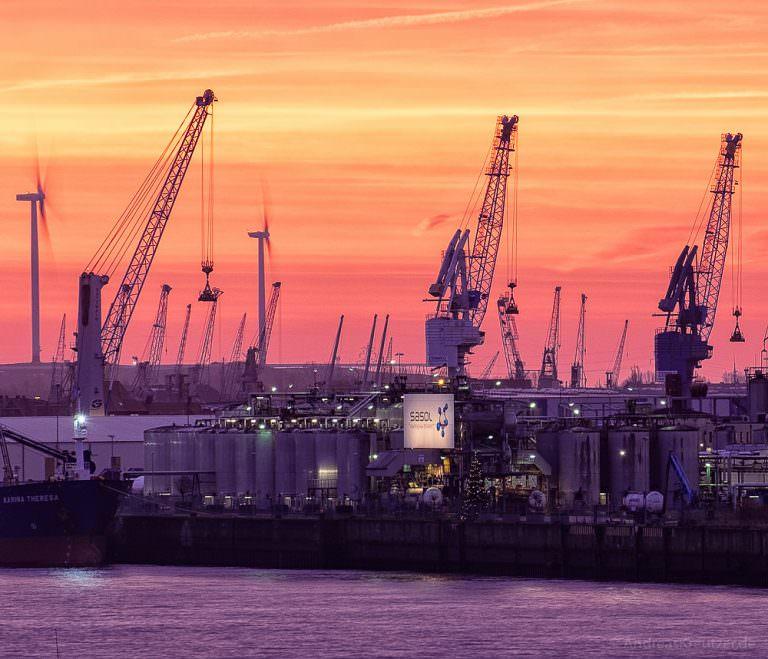 Kräne im Hamburger Hafen im Morgenlicht