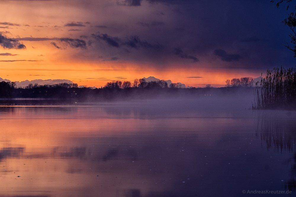Nebel auf der Elbe