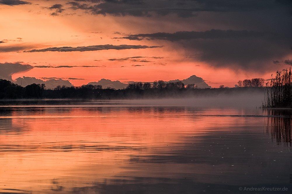 Nebel auf der Elbe V