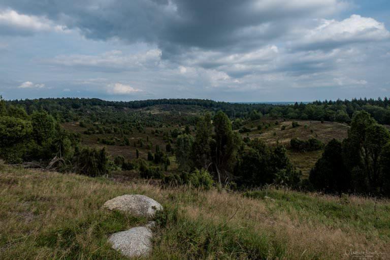 Blick von der Aussichtsplattform auf den Totengrund in der Lüneburger Heide