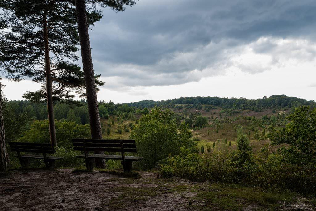 Blick aus den Totengrund in der Lüneburger Heide vom Holzberg