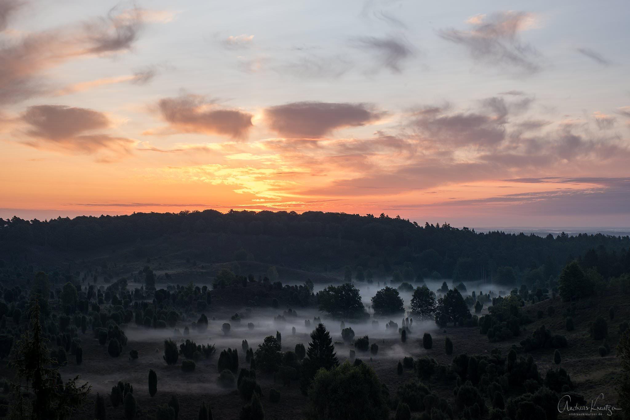 Totengrund in der Lüneburger Heide beim Sonnenaufgang