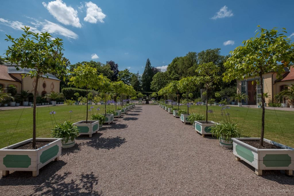 Schloss Belvedere Orangerie - Weimar