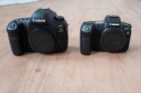 Canon EOS R & 5D Mark IV
