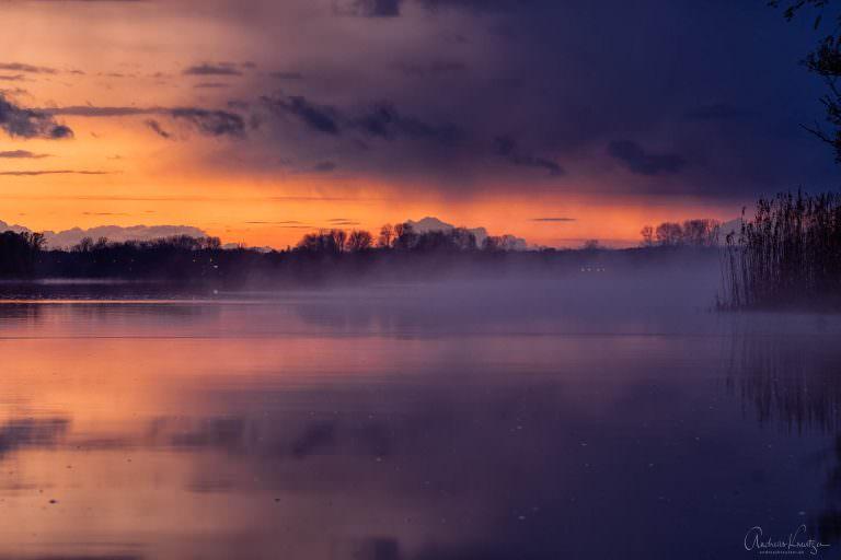 Nebel auf der Elbe IV